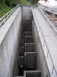 Ballard Locks empty fish ladder
