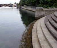 Ballard Locks steps