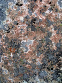 Bearhead Mountain rock pattern