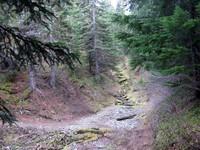 Buck Creek crossing Suntop Trail