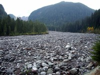 Carbon River Trail