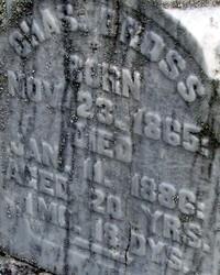 Carbonado graveyard