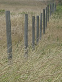 Clallam county park fence