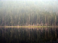 Coplay Lake