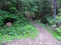 Cowlitz Divide Trailhead