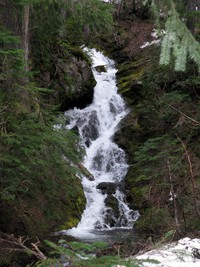 Cowlitz Divide trail Olallie Creek waterfall