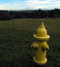 Hatton Road fire hydrant with Mt Hood 117