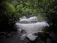 Kanaskat Park rock