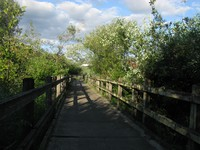Mercer Slough bike trail