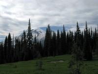 Mount Rainier from Cowlitz Divide