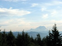 Mount Rainier from Taylor Mountain