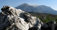 Mt Log St Helens