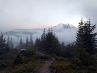 Mt Rainier from Suntop