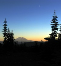 Mt Rainier from bush whack from geocache geocache