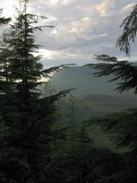 Mt Si from Cedar Butte
