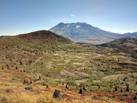 Mt St Helens from trail to Coldwater Peak