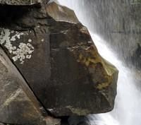 Nooksack River sphinx