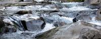 Paradise River rocks