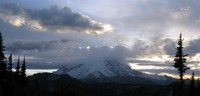 Rainier and clouds from a northern hill