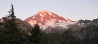 Rainier at sunset from Spray Park Trail