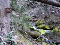Ranger Creek trail sign