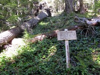 Ranger Creek trailhead sign