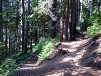 Red Mountain Kendall Katwalk trail split