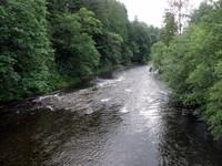 Riverbend downstream