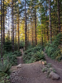 Summit Ridge bike trail