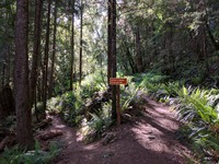 Talus Loop trail sign