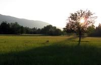 Tanner Landing Park