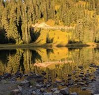 Tipsoo Lake looks back on photographers