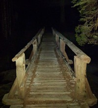 bridge to the night