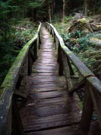 carbon river wooden bridge