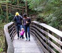 charlie zizi and summer on wallace falls trail