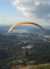 flyers from Poo Poo Point