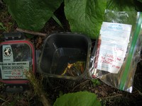 geocache Little Box in the Woods one con