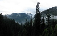 hills and clouds from Denny Creek trail