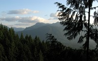 hills from Wallace Falls trail