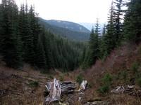 looking down Buck Creek