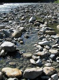middle fork snoqualmie river rocks