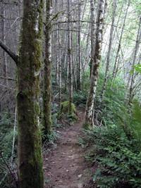 most pleasant trail