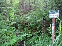 old trail access to Rattlesnake Ridge