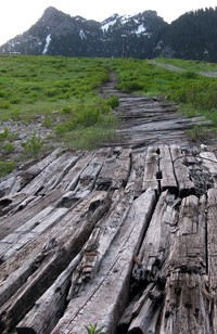 old wooden road