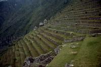 Machu Picchu terraces 1980