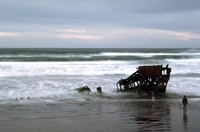 Peter Iredale 1971