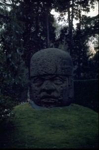 big rock Olmec head suffering from boredom 1975