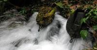 pipes feeding lost glasses trail creek
