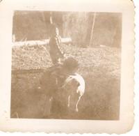 rb 9 eric bruce heegles dog 1949 1950