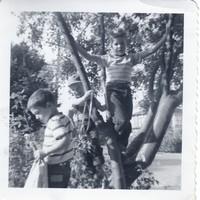 rb bruce tom eric sep 1954 001